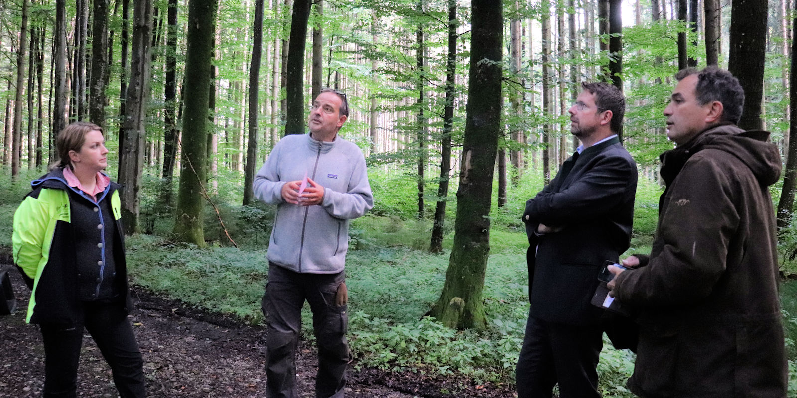 Beim Waldbegang mit Vertretern der FBG Memmingen informierte sich der Bundestagsabgeordnete über den Zustand der Unterallgäuer Wälder.